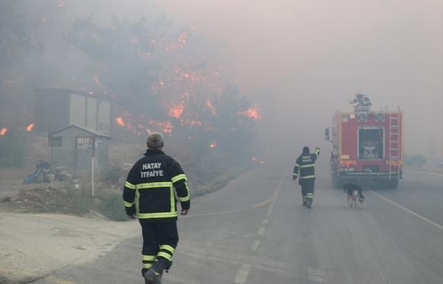 Çıkan orman yangını 3 ilçeye yayıldı