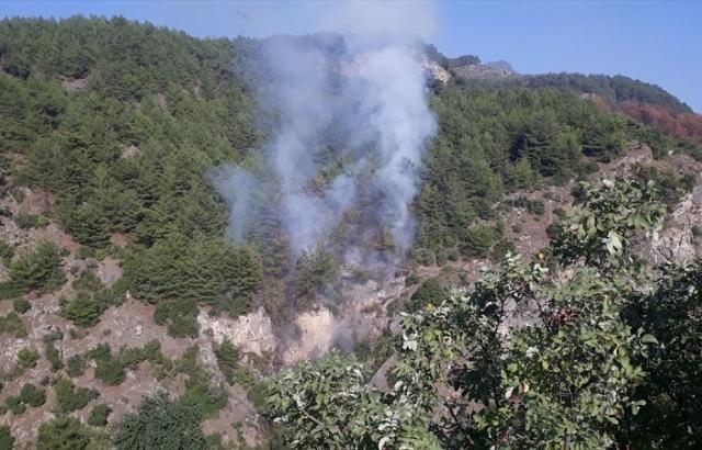 Çıkan orman yangını kontrol altına alındı
