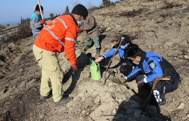 Hatay'da polisler yanan ormanlara fidan dikti