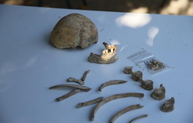 Kazıda çıkarılan 3500 yıllık iskelet, tarihe ışık tutuyor