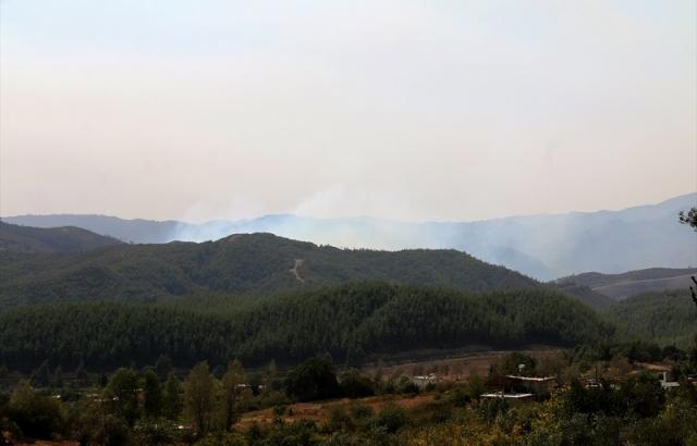 Türkiye'ye sıçrayan orman yangını kontrol altına alındı