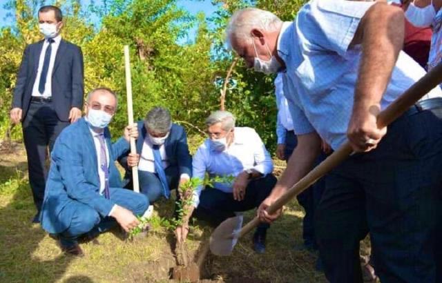 Yayman, Kırıkhan'daki fidan ekim merasimine katıldı