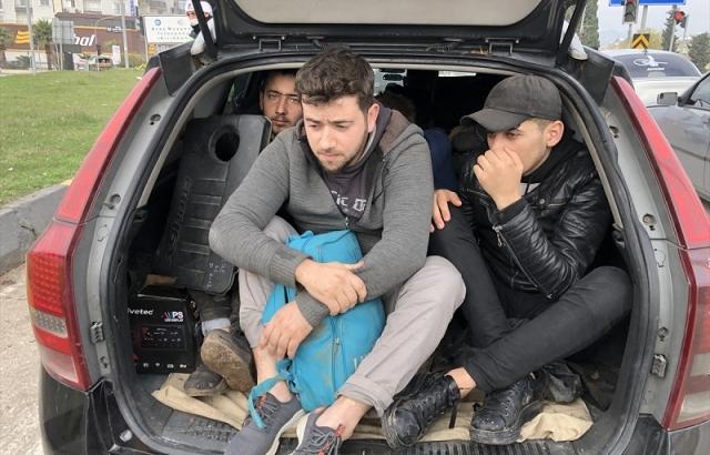Hatay'da 12 sığınmacı yakalandı