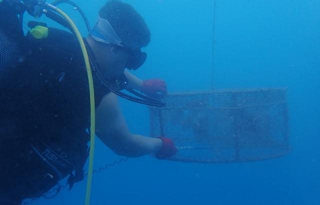 Kafesle balık avlayan 2 kişiye 7 bin 416 lira ceza