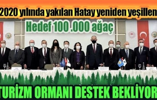 Hedef 100 bin ağaç!