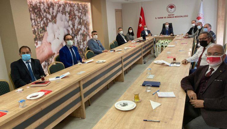 Tarımsal üretim sektörünün analiz toplantısı yapıldı