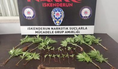Uyuşturucu operasyonunda 1 gözaltı