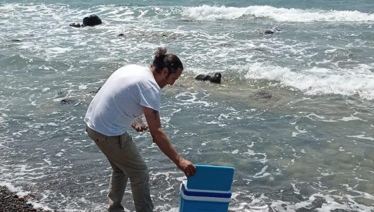 Sahilde görülen sıvının müsilaj olmadığı öğrenildi