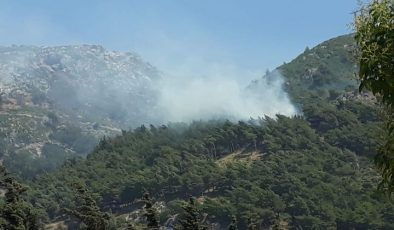 Habib-i Neccar'da ki yangın söndürüldü