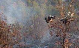 Dağlık Alanda Çıkan Yangın Söndürüldü
